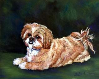 Pastel Dog Portrait of Lhasa Apso by Julie A. Brown