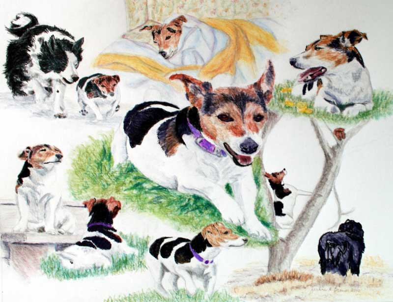 Memorial Portrait Montage of Tilly the Jack Russell Terrier by New Liskeard artist Julie A. Brown