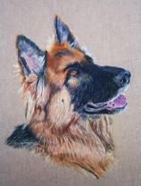 Pastel Shepherd Dog Portrait by Julie A. Brown - Blue