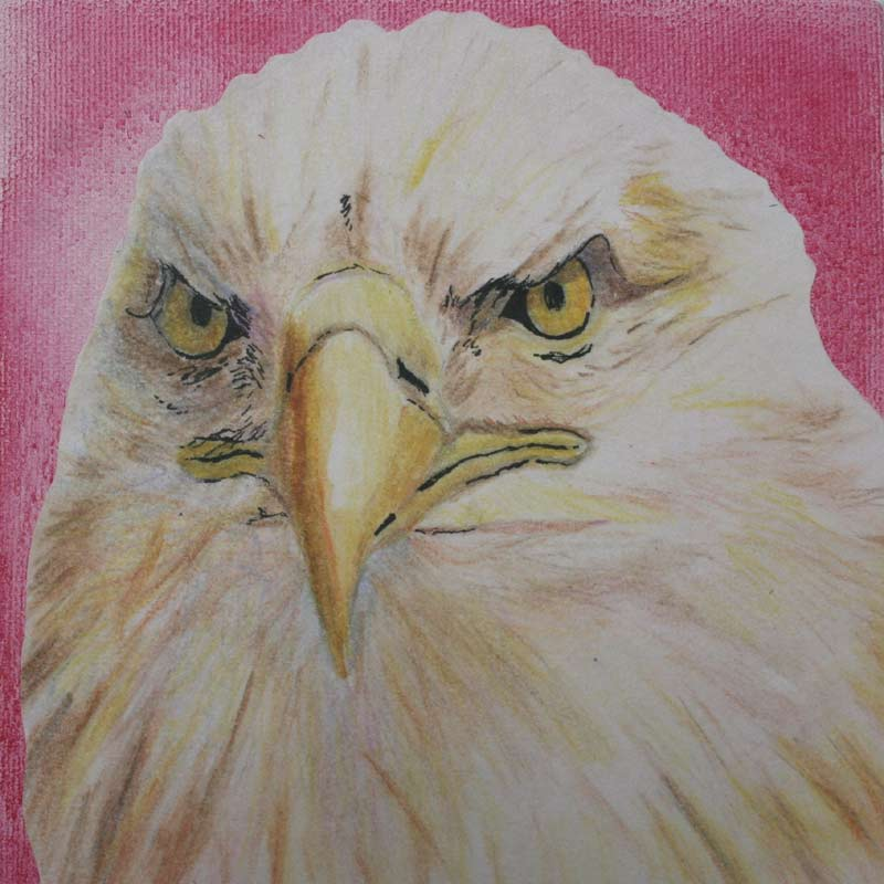 The Eagle:  Strength, acrylic painting by Julie A. Brown