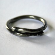 Sterling Silver Budding Twig Ring by Julie A. Brown