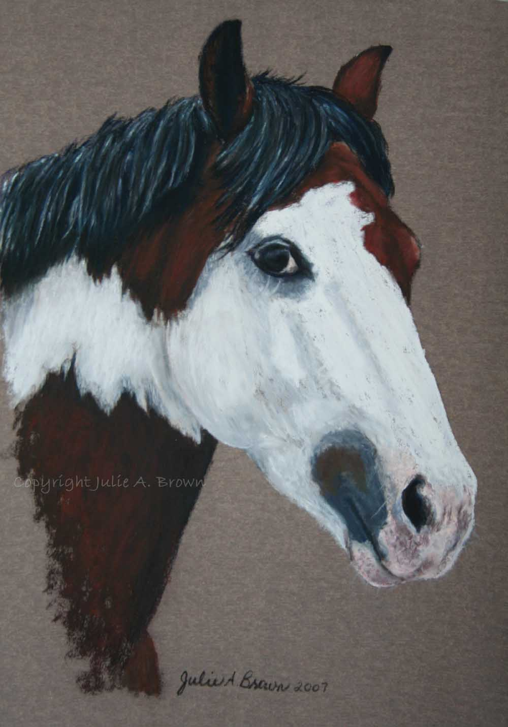 Wally - Pastel horse portrait by Julie A. Brown