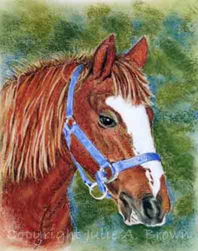 windsong - pastel horse portrait by Julie A. Brown